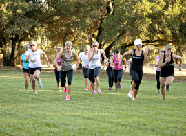 Local 5k and 10k Races